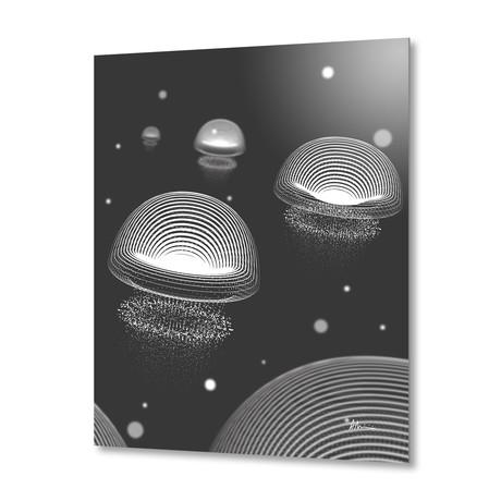 Jellyfishes BW // Aluminum