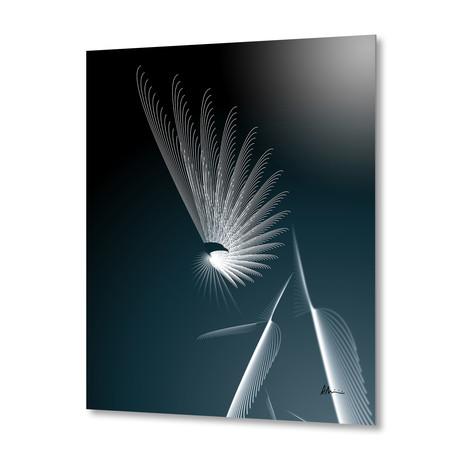 Eagle // Aluminum