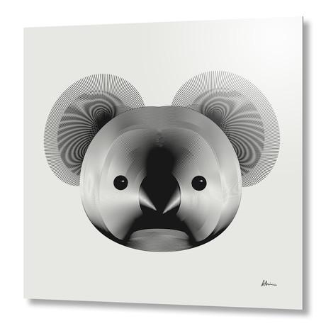 Koala // Aluminum