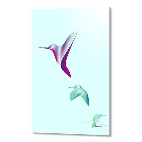 Hummingbirds // Aluminum