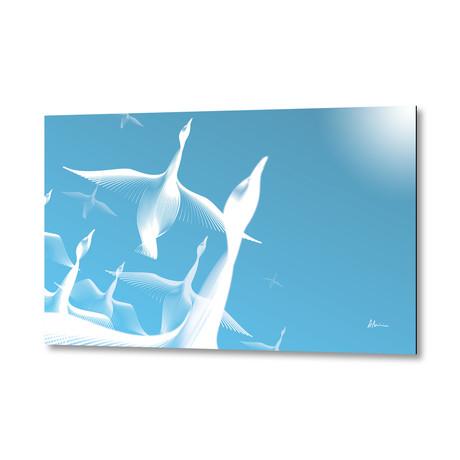 Geese // Aluminum