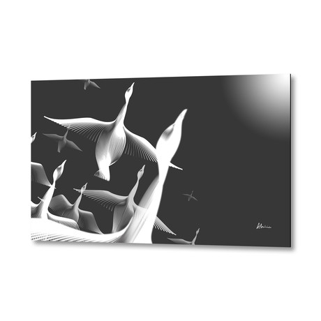 Geese BW // Aluminum