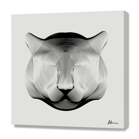 Puma // Canvas