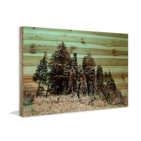 The Tallest Trees // Natural Pine Wood (60″W x 40″H x 1.5″D)