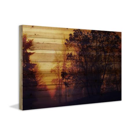 Sleepy Sunrise // Canvas