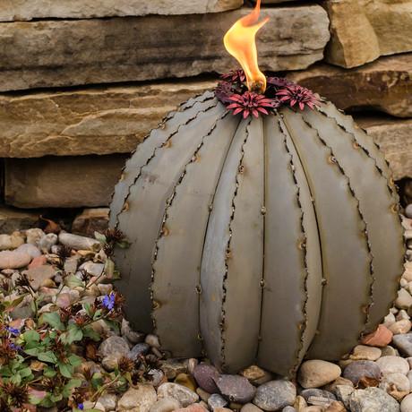 Golden Barrel Cactus Torch