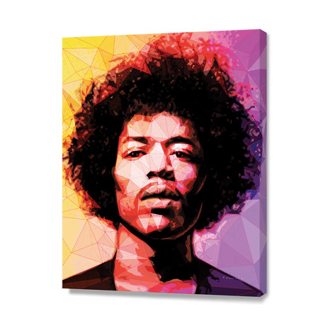 Hendrix // Stretched Canvas