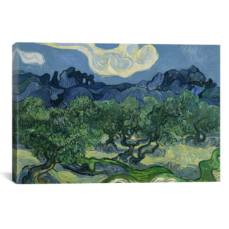 "Olive Trees with the Alpilles in the Background // Vincent van Gogh // 1888 (26""W x 18""H x 0.75""D)"