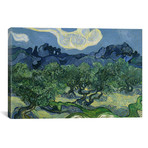 """Olive Trees with the Alpilles in the Background // Vincent van Gogh // 1888 (26""""W x 18""""H x 0.75""""D)"""