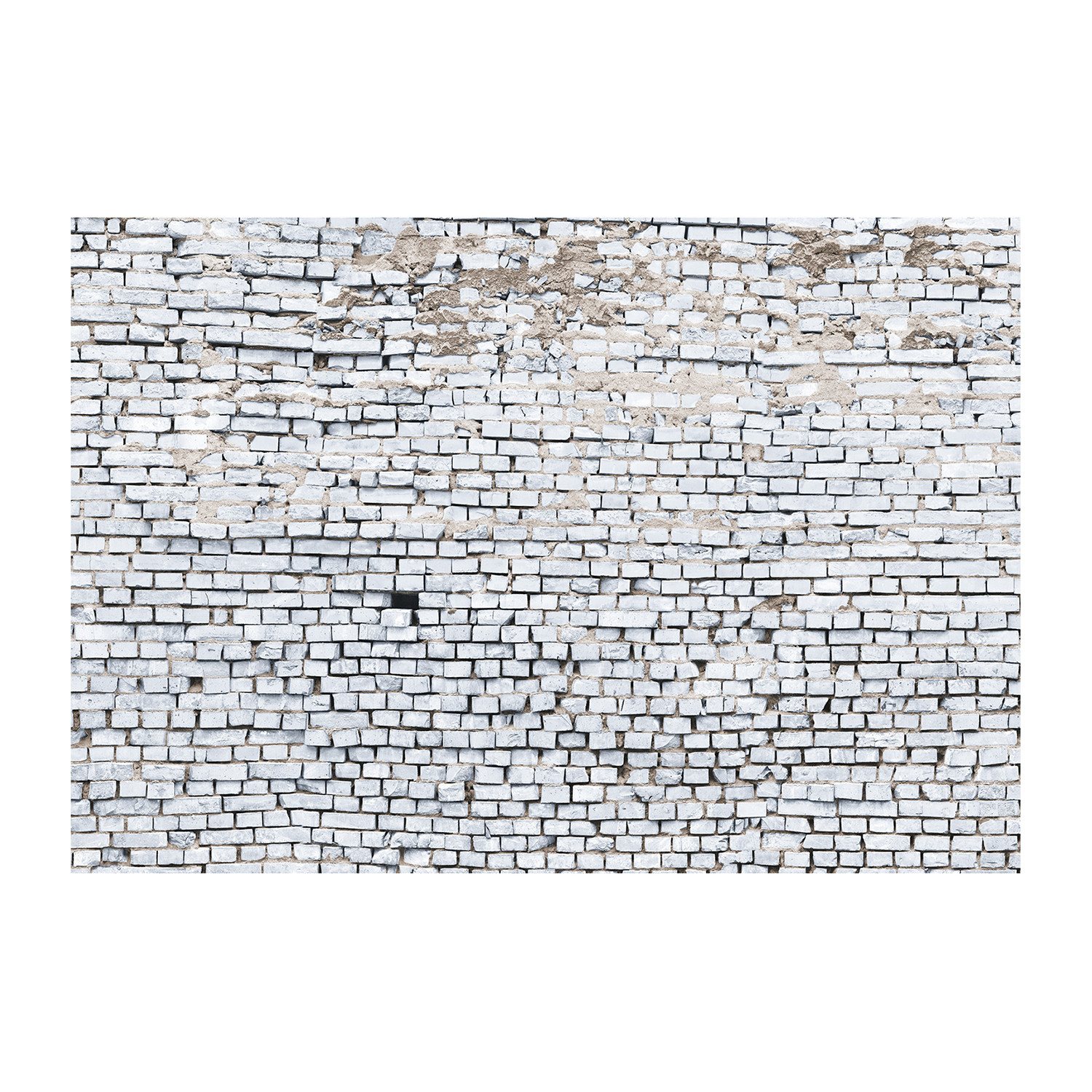 White Brick Wall Mural Brewster Home Fashions Touch of Modern