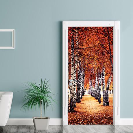 Autumn Birch Tree Path