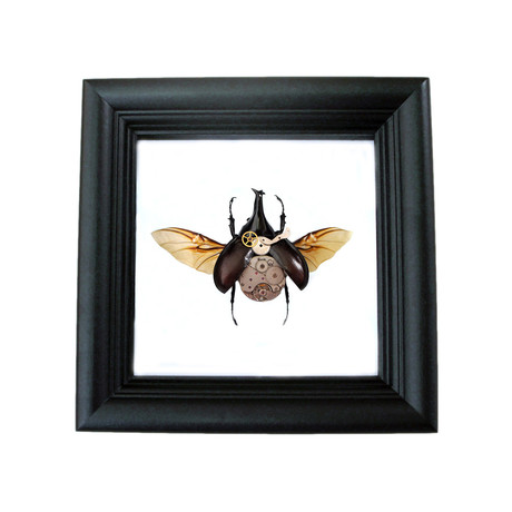 Steampunk Beetle Shadow Box