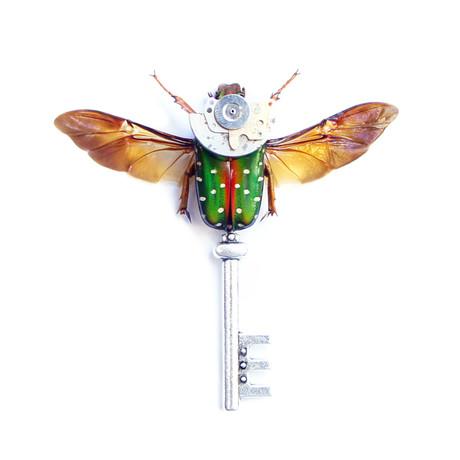 Steampunk Beetle Key Shadow Box