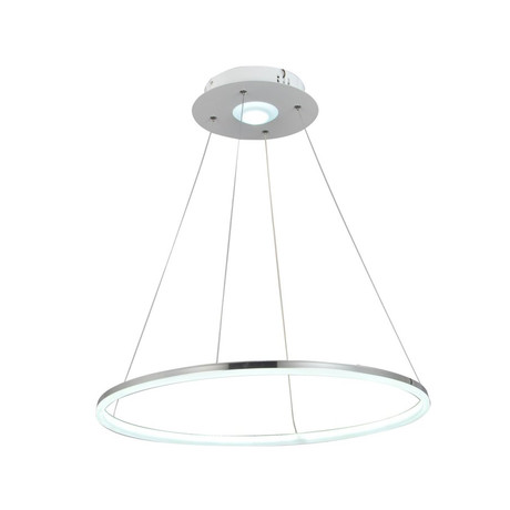 Modern Nature Pendant Light + Remote Control
