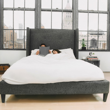 ECOSHEEX Down Alternative Comforter (Full/Queen)