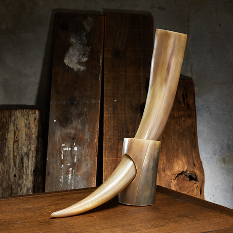 Polished Long Buffalo Drinking Horn + Stand