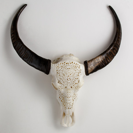 Carved Buffalo Skull // Dead Whisperers