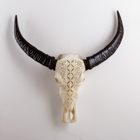 Carved Buffalo Skull // Enchanted Flowers