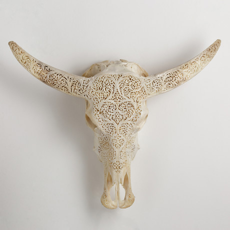 Carved Buffalo Skull // All Laced Up