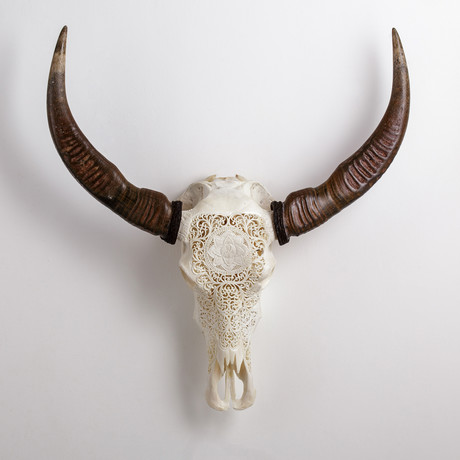 Carved Buffalo Skull // Lotus Love