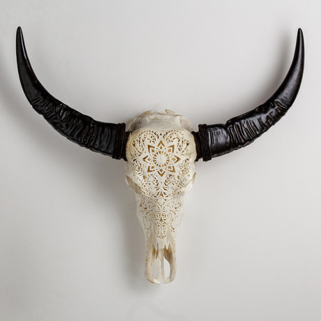 Carved Buffalo Skull // White Mandala