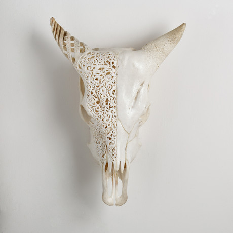 Carved Cow Skull // Side By Side