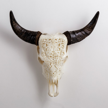 Carved Cow Skull // XL Horns // Flower