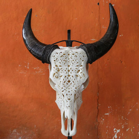Carved Cow Skull // XL Horns // Tribal #6