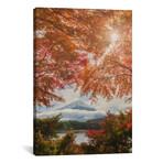 """Autumn In Japan XXIV // Daniel Kordan (12""""W x 18""""H x 0.75""""D)"""
