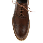 Sleek Patent Wing-Tip Oxford // Brown (Euro: 43)