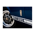 """GT350 (30""""W x 24""""H x 3.8""""D)"""