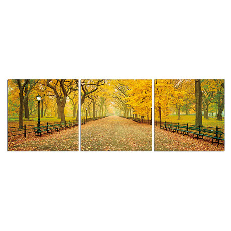 "Autumn Trees in Central Park (20""H x 60""W x 1""D)"