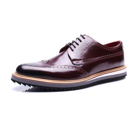 Medallion Wing-Tip Shoe // Bordeaux (Euro: 39)