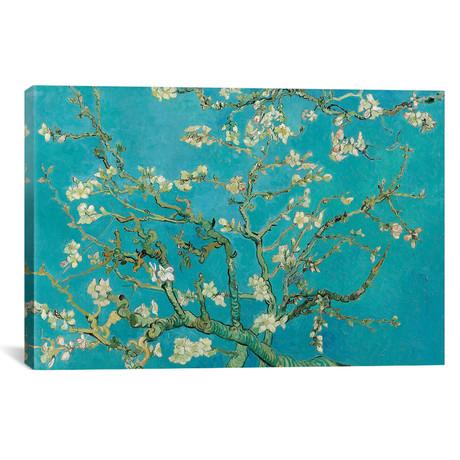 "Almond Blossom // Vincent van Gogh // 1890 (26""W x 18""H x 0.75""D)"