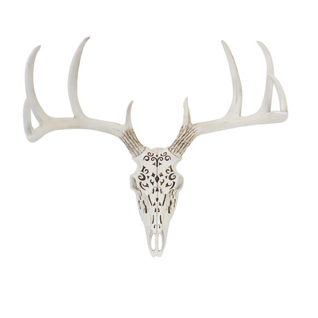 Tribal Deer Skull (Ivory)
