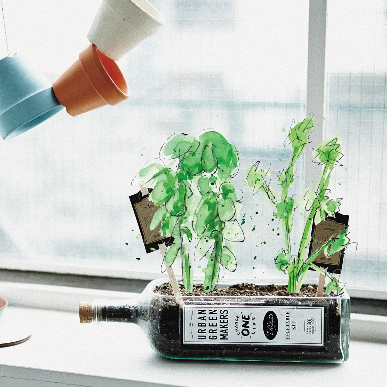 Italian vegetable kit urban green makers touch of modern for Italian kit