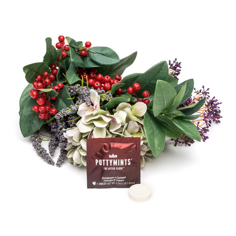 Pottymints // Evergreen + Currant // Box of 28