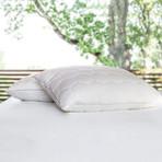 Performance Down Pillow (Standard // Stomach/Back)