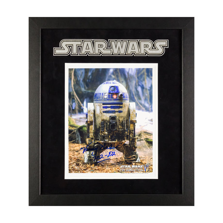 Signed Artist Series // R2D2 II