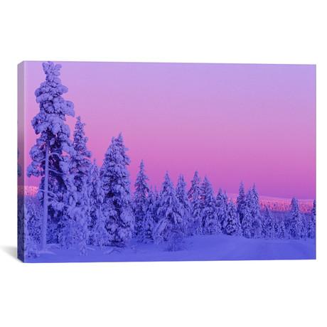 "Magical Winter Sunset, Saariselka, Lapland, Finland // Daisy Gilardini (26""W x 18""H x 0.75""D)"