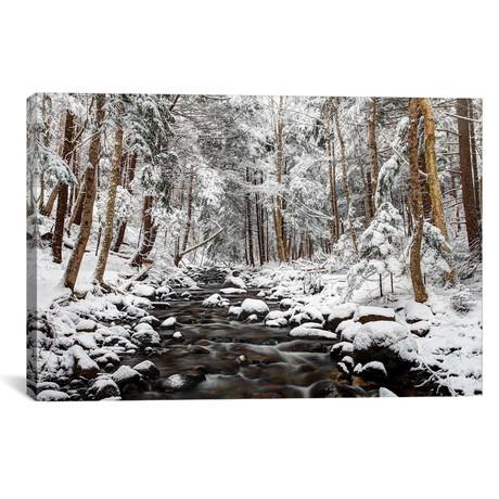 """Stream In Winter, Nova Scotia, Canada // Scott Leslie (26""""W x 18""""H x 0.75""""D)"""