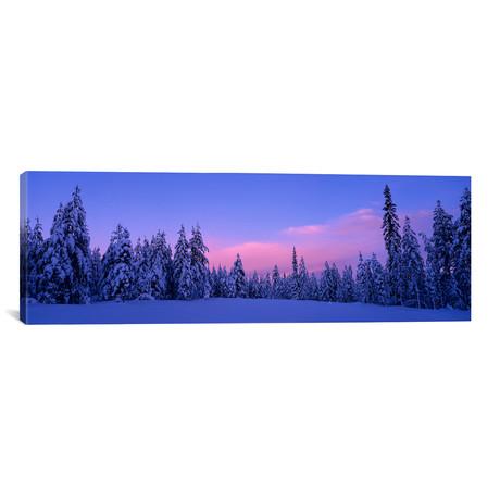"Snowy Winter Landscape, Dalarna, Svealand, Sweden (36""W x 12""H x 0.75""D)"