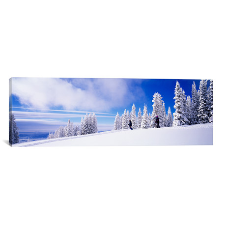 """Steamboat Springs, Colorado (36""""W x 12""""H x 0.75""""D)"""