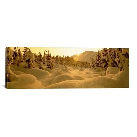 "Snowy Winter Landscape At Sunset, Turnagain Pass (36""W x 12""H x 0.75""D)"