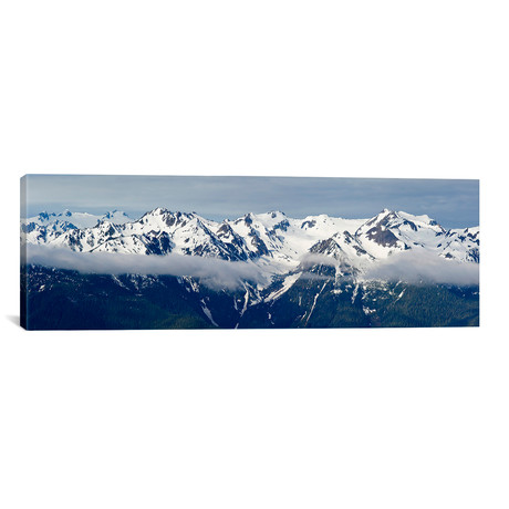 """Snow covered mountains, Hurricane Ridge, Olympic National Park (36""""W x 12""""H x 0.75""""D)"""