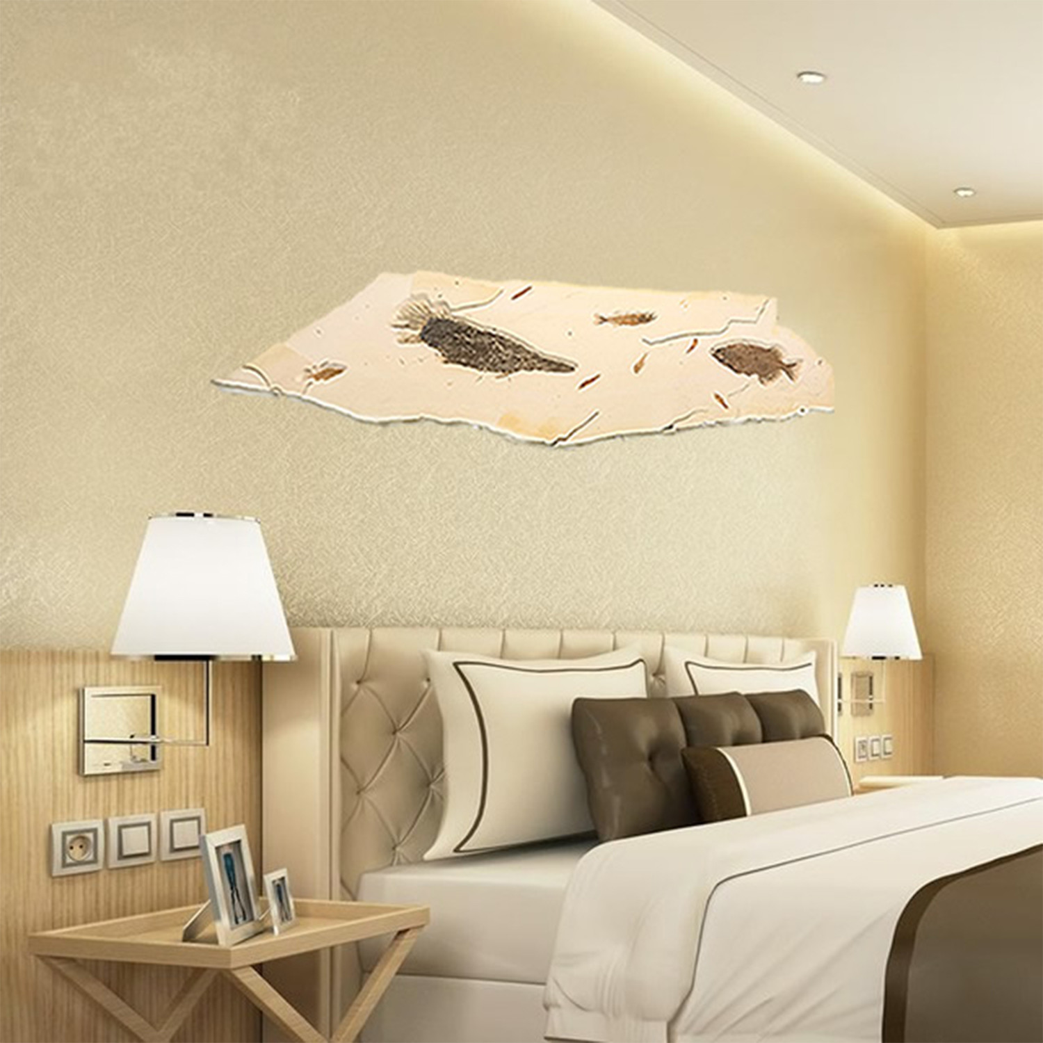 50 million year old fossil fish art fossil shack touch for Bedroom wallpaper sale