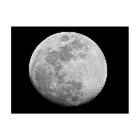 "Luna (24""W x 3.8""H x 30""D)"