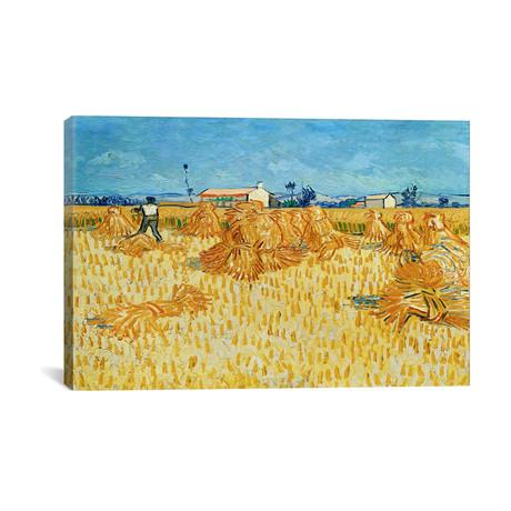 "Harvest in Provence // Vincent van Gogh // 1888 (26""W x 18""H x 0.75""D)"