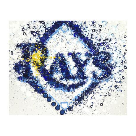 Tampa Bay Rays Logo