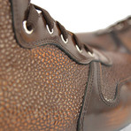 Romano Sneaker High Top // Bronze (Euro: 41)